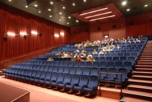 ef9ffb6c1 Pred Europa Cinemas skončili len multiplexy Palace cinemas v bratislavskom  Poluse a Auparku, ktoré sa stalo najúspešnejším kinom uplynulého roka.