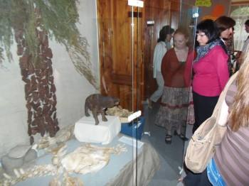 Fotografie zo slávnostného otvorenia výstavy ZAVIATY SVET V PRAVEKU 3