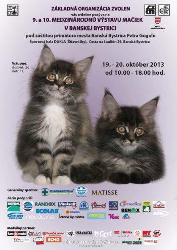 19_Výstava mačiek