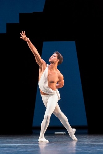 artmax balet