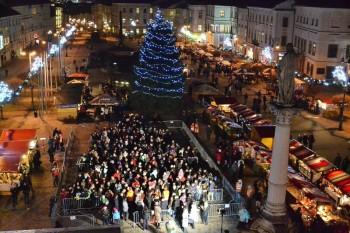 Zivy vianocny stromcek z ludi, Banská Bystrica, 16.12.2013