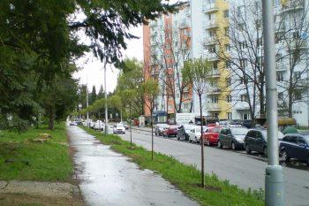 Mladeznicka_1