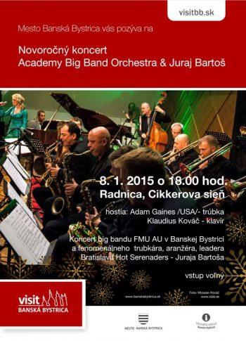 novorocny koncert15