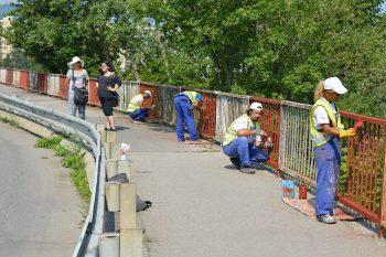 nezamestnani natieranie plota