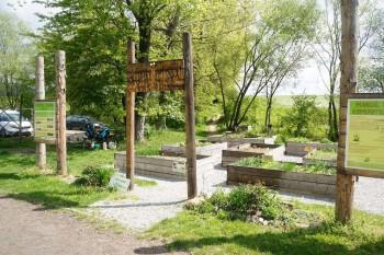Ekoden Komunitna zahrada Sasova 2016 | BBonline.sk, ZVonline.sk