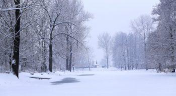 pocasie zima sneh hmla